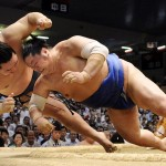 too Real Sumo Fighting video