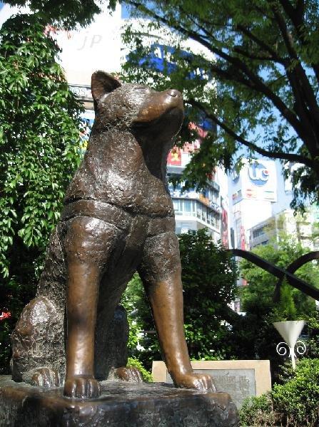 Hachiko statue | Travelience