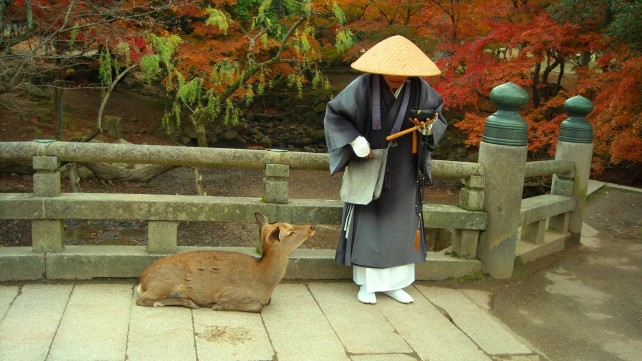 Nara In 1 Day